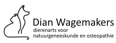 Dian Wagemakers